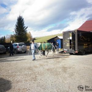 2012-11-03-11-hubertus-jindrichov-2c