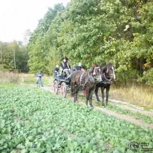 2012-10-13-15-hubertus-jindrichov-5