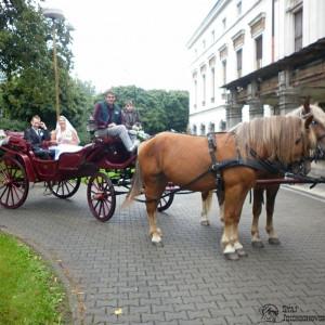 2012-09-01-13-02-28-jindrichovska-svatba-03